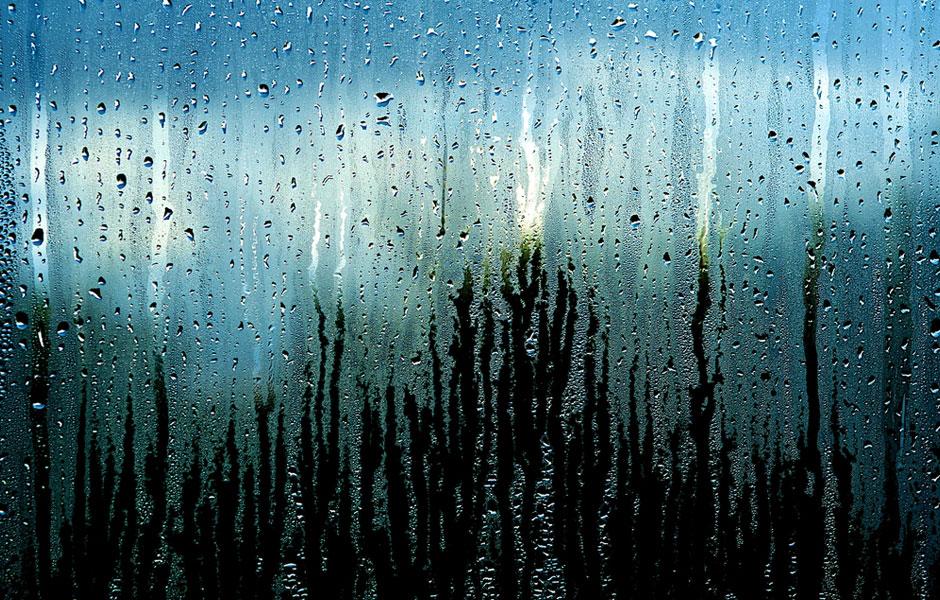 Condensaciones y humedades